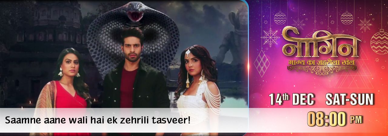 telecast time of naagin s4